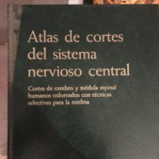 Libros de segunda mano: ATLAS DE CORTES DEL SISTEMA NERVIOSO CENTRAL. EUNIBAR. 1ª ED. 1978. SUSSANA ZULEGER. STAUBESAND. Lote 195005461