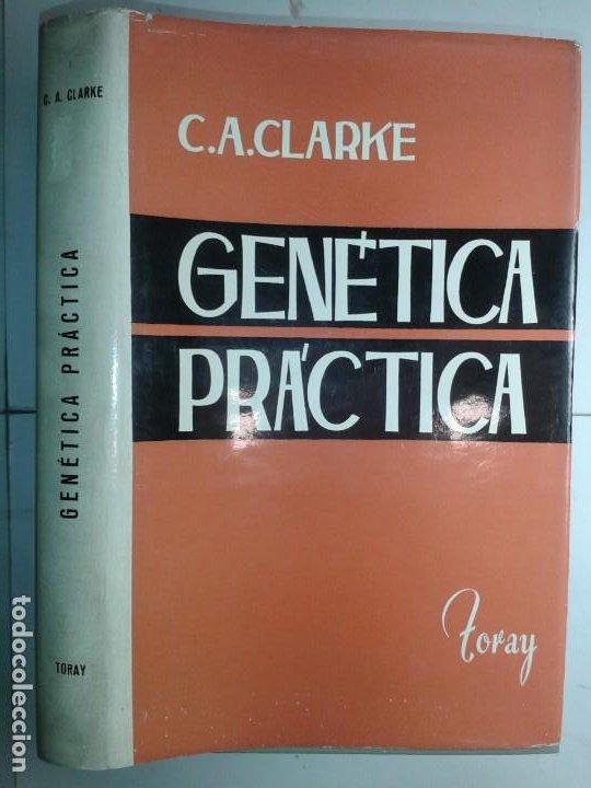 GENÉTICA PRÁCTICA 1965 C. A. CLARKE 1ª EDICIÓN TORAY (Libros de Segunda Mano - Ciencias, Manuales y Oficios - Medicina, Farmacia y Salud)