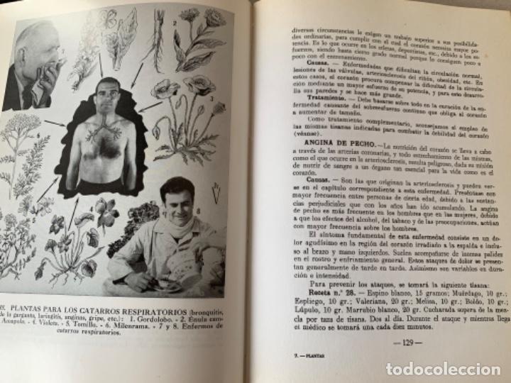 Libros de segunda mano: Plantas Medicinales, Dr. Vander - Foto 3 - 201503620
