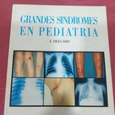 Libros de segunda mano: TUBERCULOSIS PULMONAR EN EL NIÑO - A. DELGADO 1995. Lote 204193452