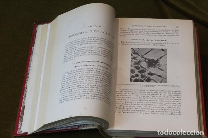 Libros de segunda mano: Éléments dendocrinologie physiologique,Max y Claude Aron,Libraires de lacadémie de médecine,1950. - Foto 4 - 208842438