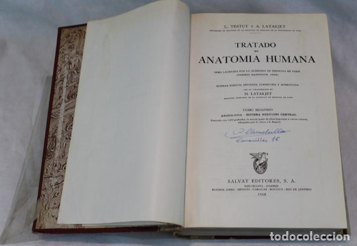 Libros de segunda mano: Cinco tomos antiguos de anatomía,encuadernados en piel y cartoné, Gómez Oliveros y Testut. - Foto 2 - 208919425
