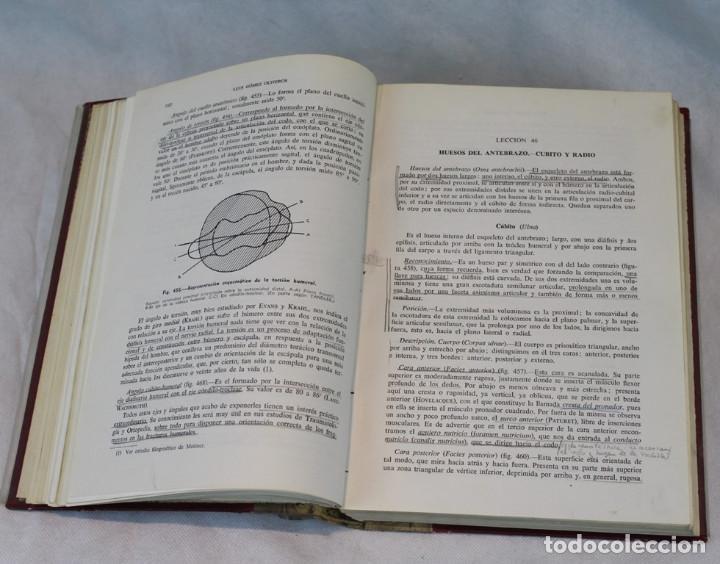Libros de segunda mano: Cinco tomos antiguos de anatomía,encuadernados en piel y cartoné, Gómez Oliveros y Testut. - Foto 6 - 208919425