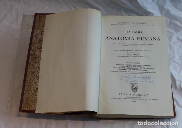 Libros de segunda mano: Cinco tomos antiguos de anatomía,encuadernados en piel y cartoné, Gómez Oliveros y Testut. - Foto 7 - 208919425