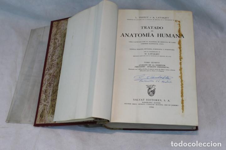 Libros de segunda mano: Cinco tomos antiguos de anatomía,encuadernados en piel y cartoné, Gómez Oliveros y Testut. - Foto 10 - 208919425
