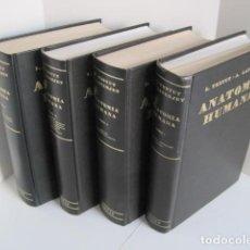 Libros de segunda mano: L. TESTUT, A. LATARJET. ANATOMÍA HUMANA. SALVAT. 4 TOMOS. PREMIO SAINTOUR. ILUSTRAN G. DEVY Y DUPRET. Lote 269314308