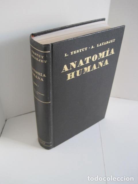 Libros de segunda mano: L. TESTUT, A. LATARJET. ANATOMÍA HUMANA. SALVAT. 4 TOMOS. PREMIO SAINTOUR. ILUSTRAN G. DEVY Y DUPRET - Foto 2 - 213995663