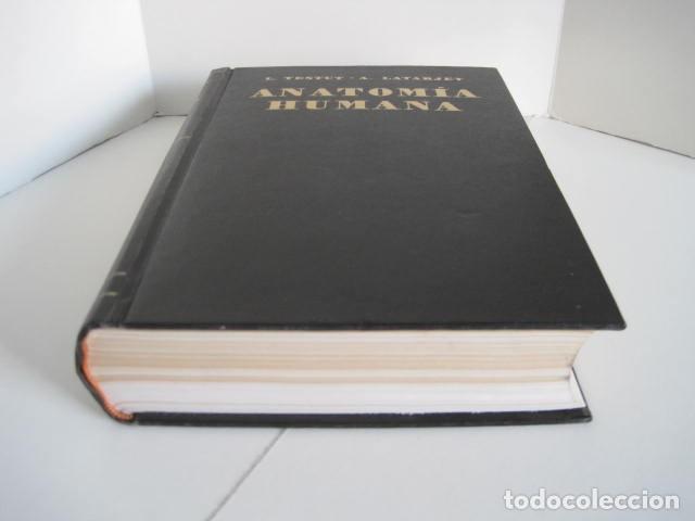 Libros de segunda mano: L. TESTUT, A. LATARJET. ANATOMÍA HUMANA. SALVAT. 4 TOMOS. PREMIO SAINTOUR. ILUSTRAN G. DEVY Y DUPRET - Foto 4 - 213995663
