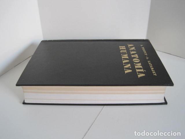 Libros de segunda mano: L. TESTUT, A. LATARJET. ANATOMÍA HUMANA. SALVAT. 4 TOMOS. PREMIO SAINTOUR. ILUSTRAN G. DEVY Y DUPRET - Foto 5 - 213995663
