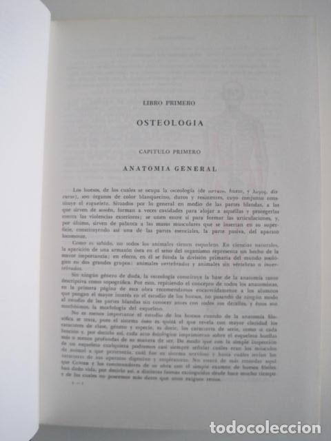 Libros de segunda mano: L. TESTUT, A. LATARJET. ANATOMÍA HUMANA. SALVAT. 4 TOMOS. PREMIO SAINTOUR. ILUSTRAN G. DEVY Y DUPRET - Foto 22 - 213995663