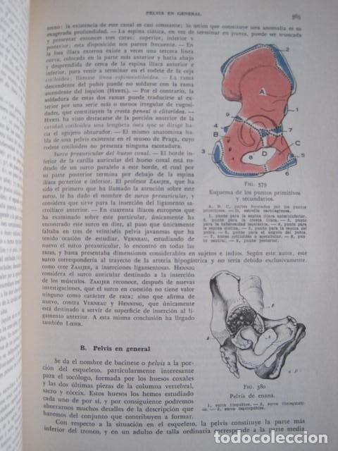 Libros de segunda mano: L. TESTUT, A. LATARJET. ANATOMÍA HUMANA. SALVAT. 4 TOMOS. PREMIO SAINTOUR. ILUSTRAN G. DEVY Y DUPRET - Foto 23 - 213995663