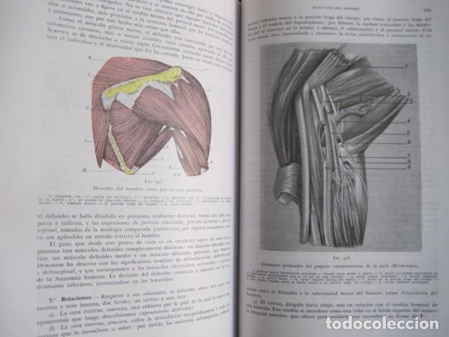 Libros de segunda mano: L. TESTUT, A. LATARJET. ANATOMÍA HUMANA. SALVAT. 4 TOMOS. PREMIO SAINTOUR. ILUSTRAN G. DEVY Y DUPRET - Foto 25 - 213995663