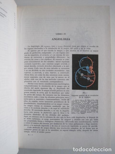 Libros de segunda mano: L. TESTUT, A. LATARJET. ANATOMÍA HUMANA. SALVAT. 4 TOMOS. PREMIO SAINTOUR. ILUSTRAN G. DEVY Y DUPRET - Foto 47 - 213995663