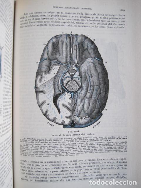 Libros de segunda mano: L. TESTUT, A. LATARJET. ANATOMÍA HUMANA. SALVAT. 4 TOMOS. PREMIO SAINTOUR. ILUSTRAN G. DEVY Y DUPRET - Foto 51 - 213995663