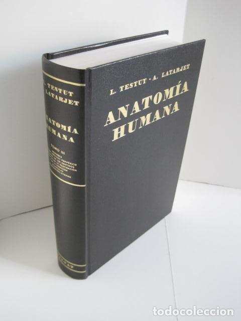 Libros de segunda mano: L. TESTUT, A. LATARJET. ANATOMÍA HUMANA. SALVAT. 4 TOMOS. PREMIO SAINTOUR. ILUSTRAN G. DEVY Y DUPRET - Foto 53 - 213995663