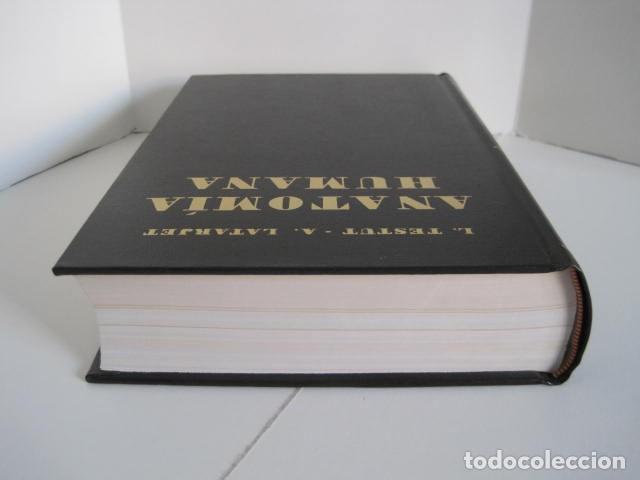 Libros de segunda mano: L. TESTUT, A. LATARJET. ANATOMÍA HUMANA. SALVAT. 4 TOMOS. PREMIO SAINTOUR. ILUSTRAN G. DEVY Y DUPRET - Foto 57 - 213995663