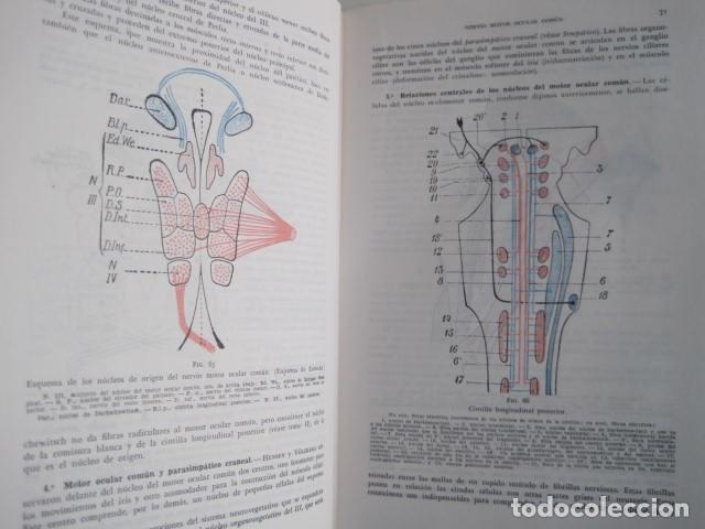 Libros de segunda mano: L. TESTUT, A. LATARJET. ANATOMÍA HUMANA. SALVAT. 4 TOMOS. PREMIO SAINTOUR. ILUSTRAN G. DEVY Y DUPRET - Foto 69 - 213995663