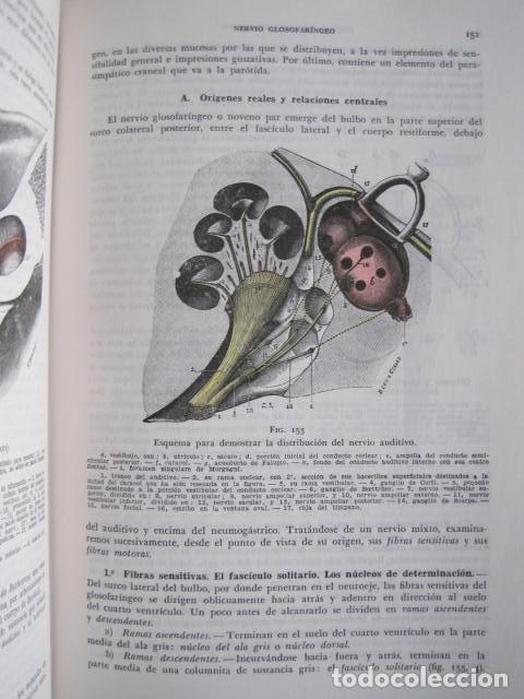 Libros de segunda mano: L. TESTUT, A. LATARJET. ANATOMÍA HUMANA. SALVAT. 4 TOMOS. PREMIO SAINTOUR. ILUSTRAN G. DEVY Y DUPRET - Foto 70 - 213995663