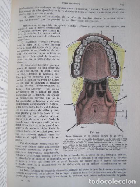 Libros de segunda mano: L. TESTUT, A. LATARJET. ANATOMÍA HUMANA. SALVAT. 4 TOMOS. PREMIO SAINTOUR. ILUSTRAN G. DEVY Y DUPRET - Foto 91 - 213995663