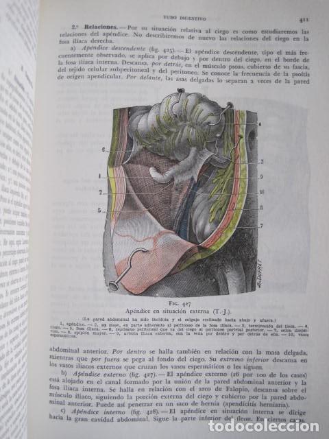 Libros de segunda mano: L. TESTUT, A. LATARJET. ANATOMÍA HUMANA. SALVAT. 4 TOMOS. PREMIO SAINTOUR. ILUSTRAN G. DEVY Y DUPRET - Foto 92 - 213995663
