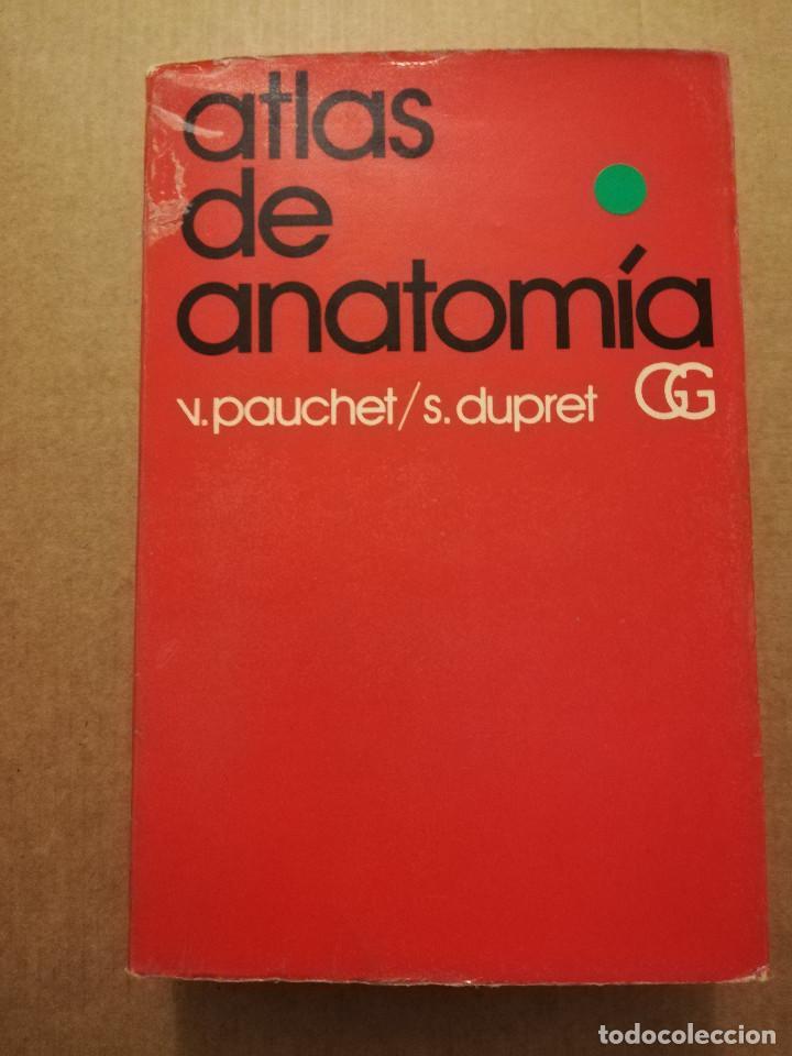ATLAS DE ANATOMÍA (VICTOR PAUCHET / S. DUPRET) (Libros de Segunda Mano - Ciencias, Manuales y Oficios - Medicina, Farmacia y Salud)