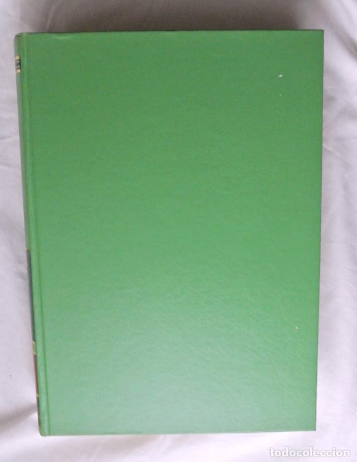 Libros de segunda mano: Libro TRATADO DE GINECOLOGIA Patología obstétrica , Tomo II, BOTELLA LUSIÁ-CLAVVERO NÚÑEZ - Foto 4 - 216684128