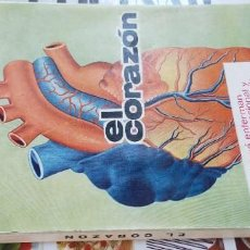 Libros de segunda mano: EL CORAZON - JOSE CASTRO B003 HOMEOPATICA NATURAL ALTERNATIVA/. Lote 217686967