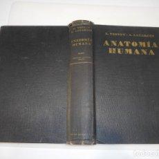 Libros de segunda mano: L. TESTUT, A. LATARJET ANATOMÍA HUMANA TOMO I Q3180T. Lote 221276466