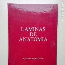 Libros de segunda mano: LÁMINAS DE ANATOMÍA. Lote 222293823