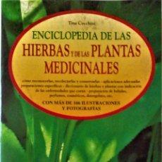 Livros em segunda mão: TINA CECCHINI - ENCICLOPEDIA DE LAS HIERBAS Y LAS PLANTAS MEDICINALES. Lote 193999163
