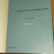 Libros de segunda mano: NEFROLOGIA CIBA ANATOMIA RIÑÓN G. WOLF HEIDEGGER 1961. Lote 231669185