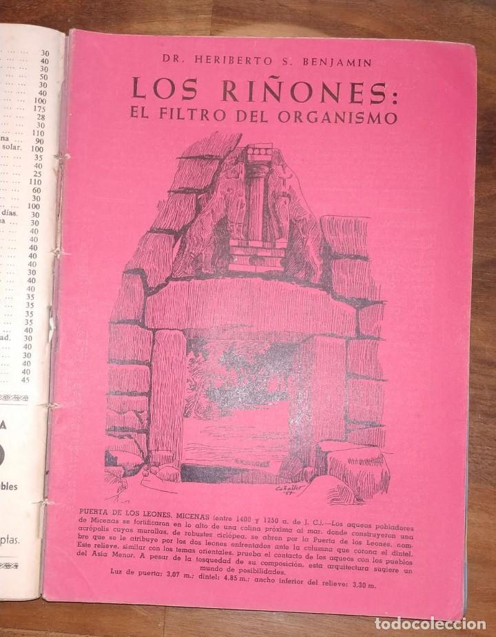 Libros de segunda mano: GRAN LOTE ENCICLOPEDIA DE LA SALUD. 60 EJEMPLARES DEL 21 AL 80. FASCICULOS DE TEMAS SANITARIOS. 1958 - Foto 21 - 236075985