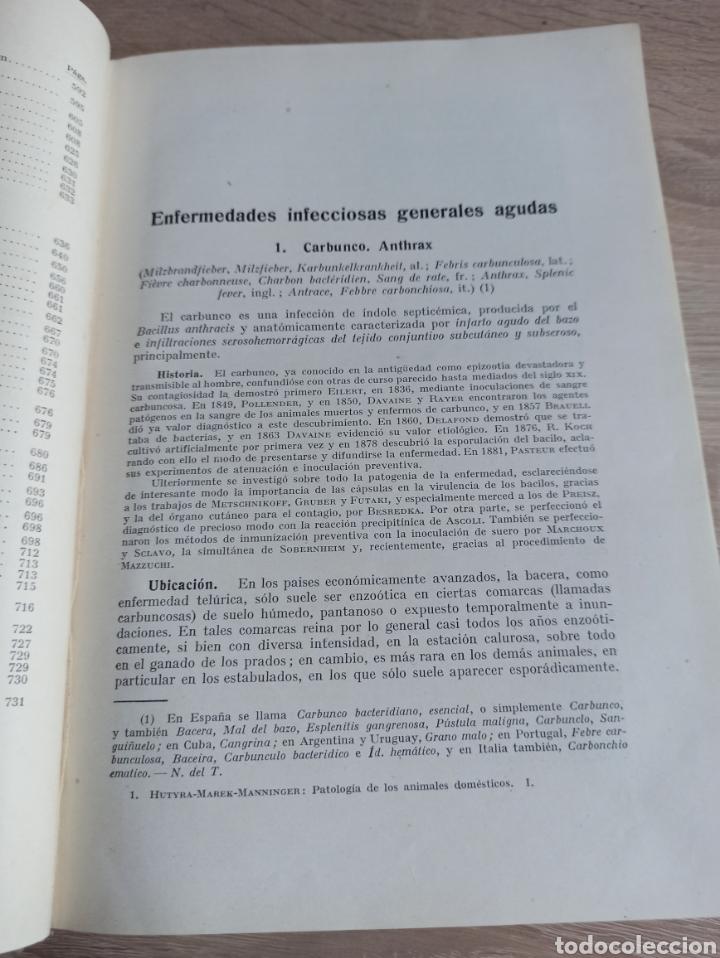 Libros de segunda mano: Patología y Terapéutica Especiales de los Animales Domesticos Tomo Primero Editorial Labor 1947 - Foto 9 - 244716700