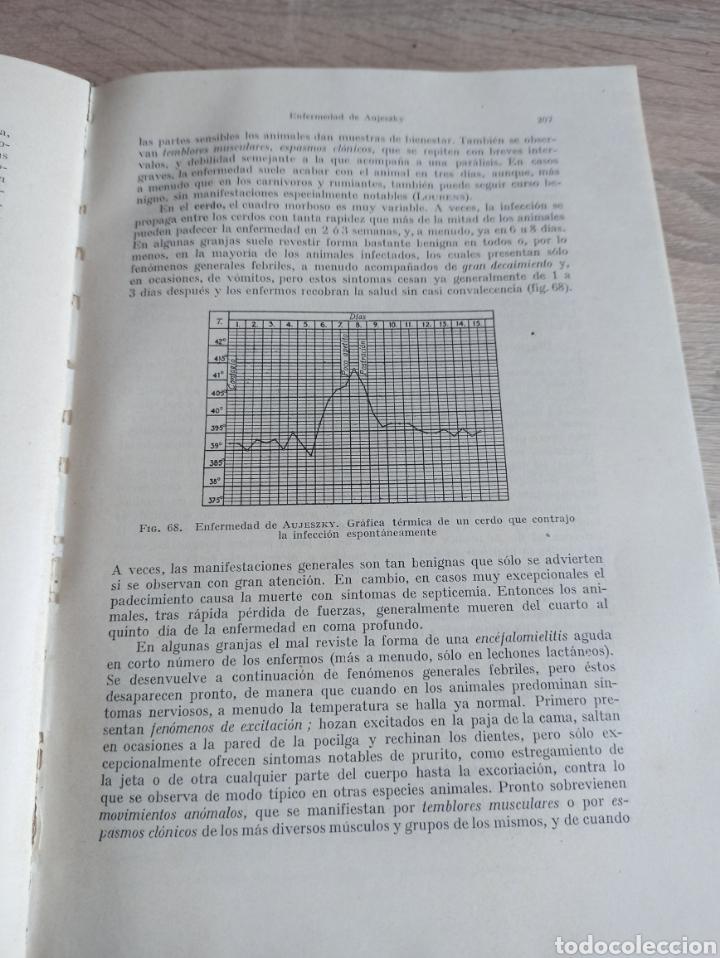 Libros de segunda mano: Patología y Terapéutica Especiales de los Animales Domesticos Tomo Primero Editorial Labor 1947 - Foto 12 - 244716700