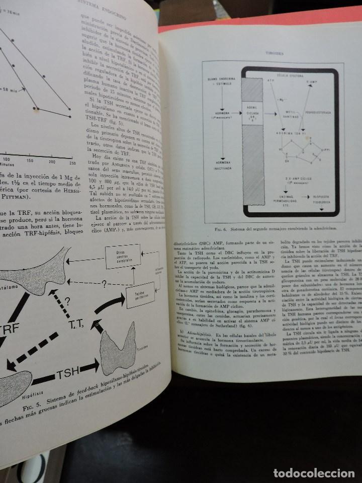 Libros de segunda mano: Patología General Tomo I y II. BALCELLS GORINA, A. CARMENA VILLARTA, M. 4ª Ed. Toray 1974 - Foto 5 - 253469085