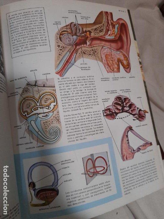 Libros de segunda mano: ENCICLOPEDIA MÉDICA FAMILIAR. Tomos I y II. Argos Vergara, Barcelona - Foto 3 - 255000470