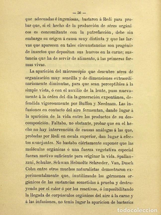 Libros de segunda mano: Discurso Universidad Central inauguración curso 1882 á 1883. Fausto Garagarza y Dugiols (Farmacia) - Foto 47 - 257732295