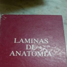 Libros de segunda mano: PRPM 63 LÁMINAS DE ANATOMÍA .OMEGA FARMACÉUTICA 1983 . APARATO RESPIRATORIO. Lote 262814750