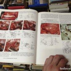 Libros de segunda mano: ATLAS DEL CORAZÓN. J. WILLLIS HURST. INTERAMERICANA / MCGRAW-HILL. 1ª EDICIÓN 1987. Lote 262818260