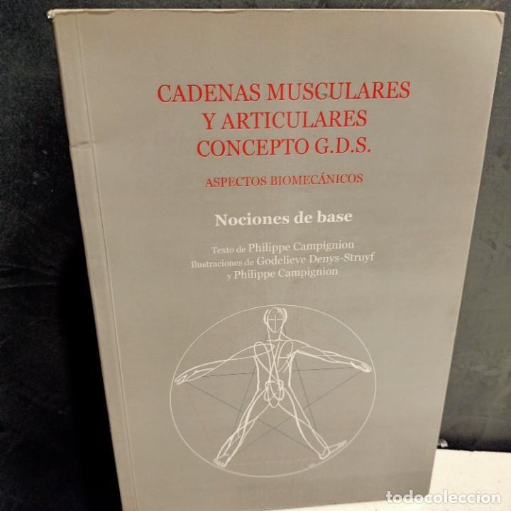 CADENAS MUSCULARES Y ARTICULACIONES CONCEPTO G.D.S., ASPECTOS BIOMECANICOS, 2001 (Libros de Segunda Mano - Ciencias, Manuales y Oficios - Medicina, Farmacia y Salud)