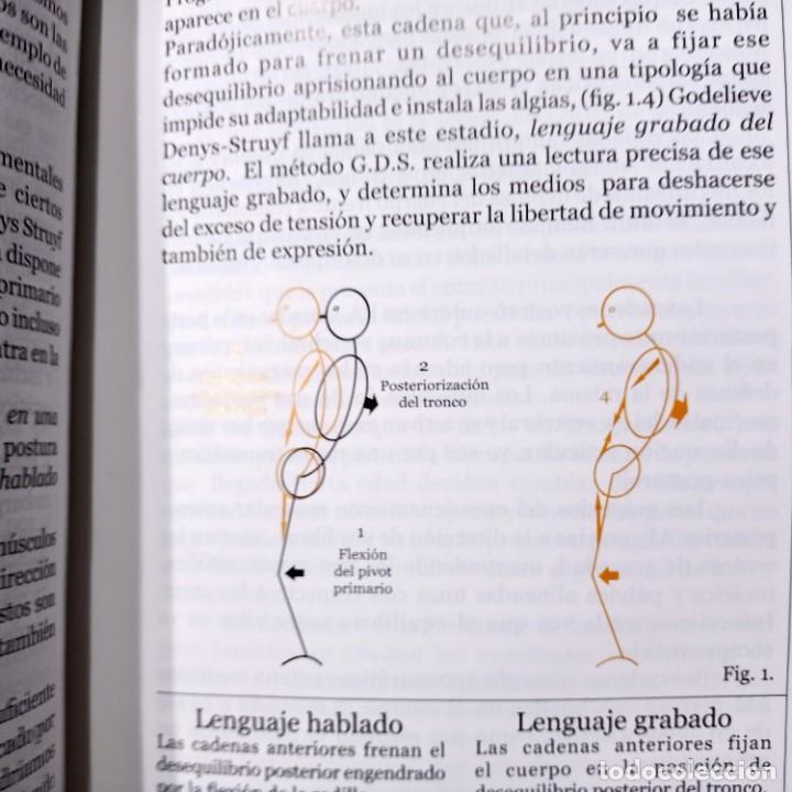 Libros de segunda mano: CADENAS MUSCULARES Y ARTICULACIONES CONCEPTO G.D.S., ASPECTOS BIOMECANICOS, 2001 - Foto 2 - 269374718