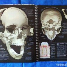 Libros de segunda mano: EL CUERPO HUMANO.ATLAS Y DVD.. Lote 270246498
