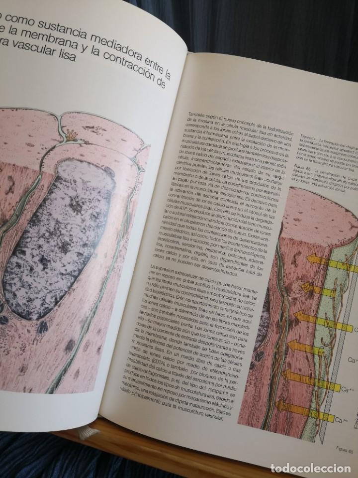 Libros de segunda mano: CARDIOLOGÍA-ENVÍO TC PAQUETE ESTÁNDAR PARA ESTE ARTÍCULO 5,99 - Foto 2 - 287686358