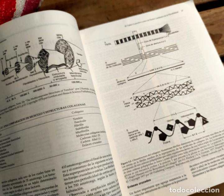 Libros de segunda mano: LOS ESTIRAMIENTOS. DESARROLLO DE EJERCICIOS. BASES CIENTIFICAS Y DESARROLLO DE EJERCICIOS - Foto 5 - 287961608