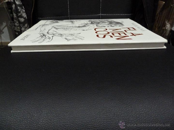 Libros de segunda mano: FLAMENCOS DE MIGUEL ALCALA EDITORIAL SALVAT FLAMENCO - Foto 6 - 53210766