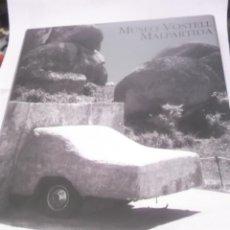 Libros de segunda mano: MUSEO VOSTELL MALPARTIDA DE CACERES-COLECCIÓN WOLF Y MERCEDES VOSTELL, SALVADOR DALÍ, ETC. 2003. Lote 130567362