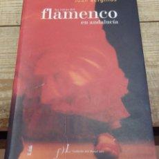 Libros de segunda mano: LAS RUTAS DEL FLAMENCO EN ANDALUCIA, JUAN VERGUILLOS,2006, 312 PAGINAS. Lote 192227233