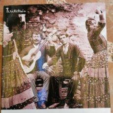 Libri di seconda mano: FLAMENCO, POR LAS VEREAS DEL CANTE, FRANCISCO DODERO MARTIN, CADIZ, 2011, 594 PAGINAS. Lote 215189908