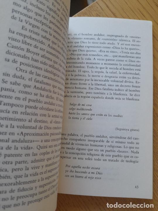 Libros de segunda mano: La espiritualidad en el cante flamenco, Alfredo Arrebola, ed. Universidad de Cadiz, 1988. Raro - Foto 8 - 288499678