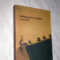 Libros de segunda mano: ESPERANDO EL CIERZO. ÁNGEL CONTE. CARRACHINAS 46, XORDICA, 2007. SIGLO XVII, INQUISICIÓN. +++. Lote 111425311